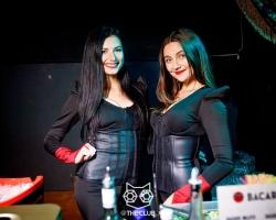 Venus Club  (19)